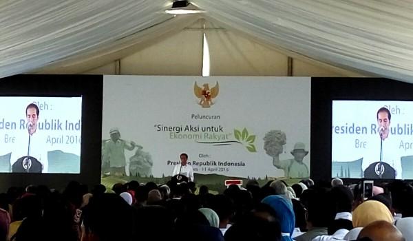 Jokowi Luncurkan Sinergi Aksi untuk Ekonomi Rakyat