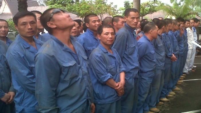 Imigrasi Diminta Atasi Serbuan Pekerja China Ilegal