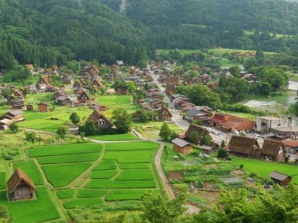 44 Desa Gagal Salurkan Dana Desa